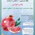 جشنواره دستاوردهای زنان سرپرست خانوار